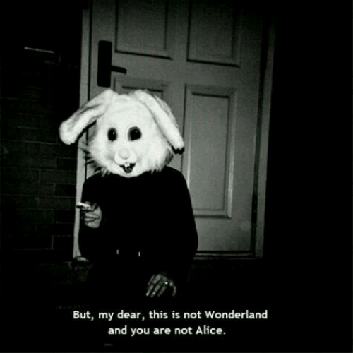 wonderland: But, my dear, this is not Wonderland  and you are not Alice.