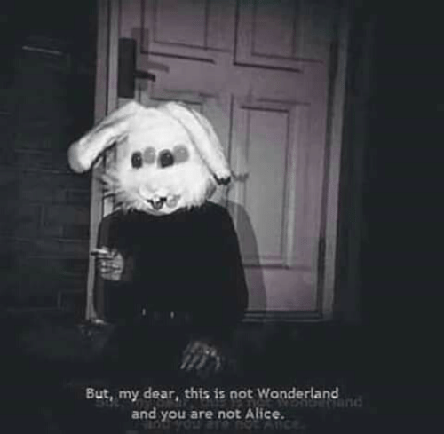 wonderland: But, my dear, this is not Wonderland  and you are not Alice.  nd