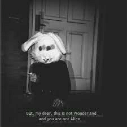 wonderland: But my dear, this is not Wonderland  and you are not Alice