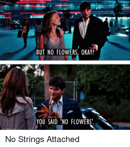 no string attached: BUT NO FLOWERS, OKAY?  YOU SAID NO FLOWERS. No Strings Attached