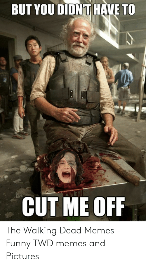 the walking dead memes: BUT YOU DIDN'T HAVE TO  CUT ME OFIF The Walking Dead Memes - Funny TWD memes and Pictures