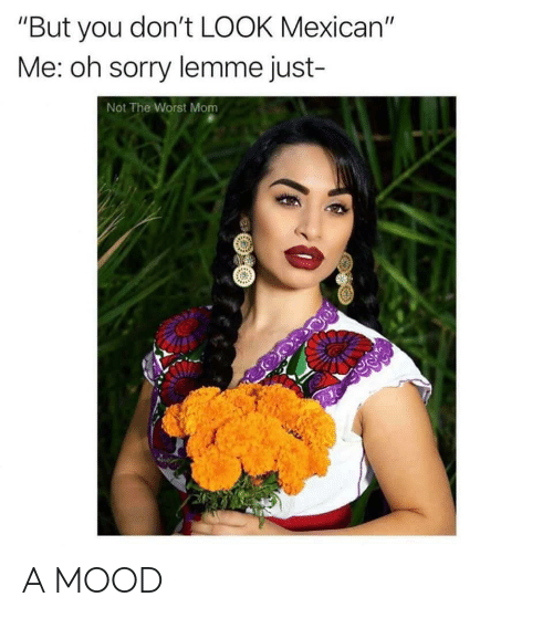 """don't look: """"But you don't LOOK Mexican""""  Me: oh sorry lemme just-  Not The Worst Mom A MOOD"""
