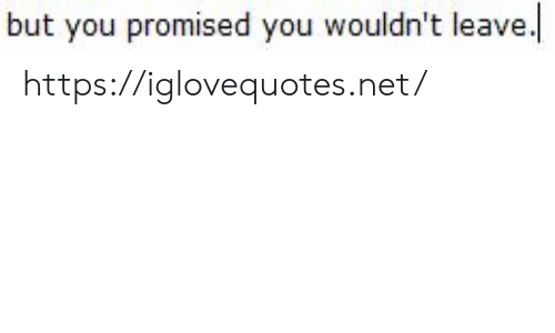 you promised: but you promised you wouldn't leave https://iglovequotes.net/