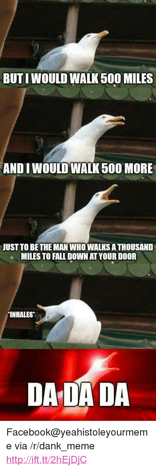 """500 Miles: BUTI WOULD WALK 500 MILES  AND I WOULD WALK500 MORE  JUST TO BE THE MAN WHOWALKS ATHOUSAND  MILES TO FALL DOWN AT YOUR DOOR  INHALES  DADADA <p>Facebook@yeahistoleyourmeme via /r/dank_meme <a href=""""http://ift.tt/2hEjDjC"""">http://ift.tt/2hEjDjC</a></p>"""