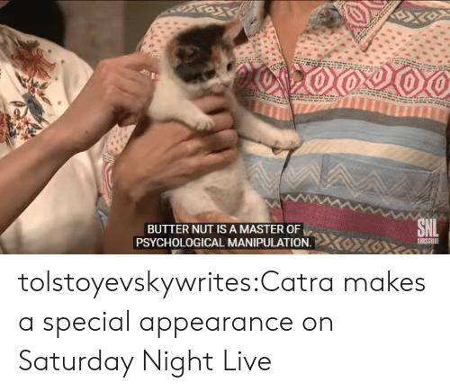 Saturday Night Live: BUTTER NUT IS A MASTER OF  SUBSCRIBE  PSYCHOLOGICAL MANIPULATION. tolstoyevskywrites:Catra makes a special appearance on Saturday Night Live