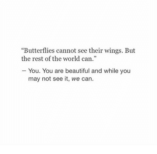 """you are beautiful: """"Butterflies cannot see their wings. But  the rest of the world can.""""  You. You are beautiful and while you  may not see it, we can."""