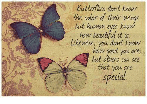 you are special: Butterflies dont know  the color d their wings  but human eyes know  how beautiful it is  likewise, you dont know  how good you are,  hut others can see  that you are  special
