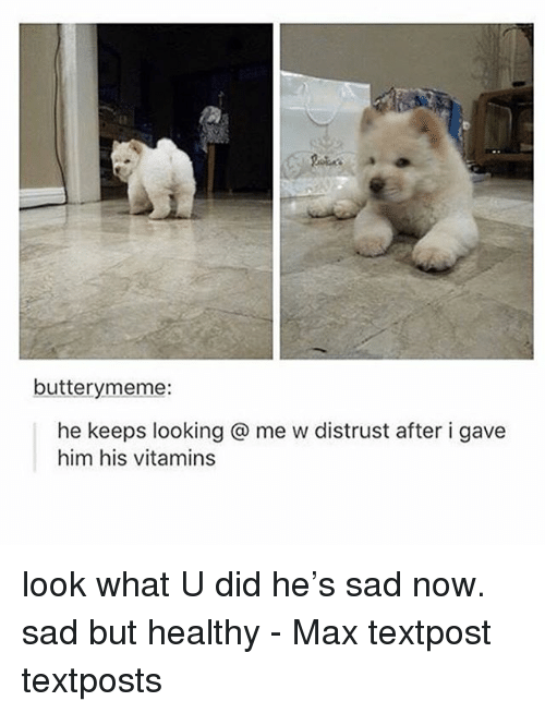 Textposts: butterymeme:  he keeps looking @ me w distrust after i gave  him his vitamins look what U did he's sad now. sad but healthy - Max textpost textposts