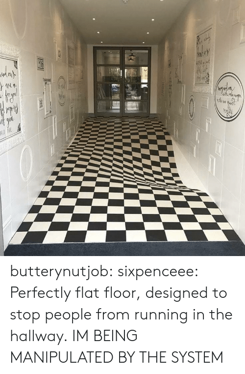 Target, Tumblr, and Blog: butterynutjob: sixpenceee: Perfectly flat floor, designed to stop people from running in the hallway.  IM BEING MANIPULATED BY THE SYSTEM