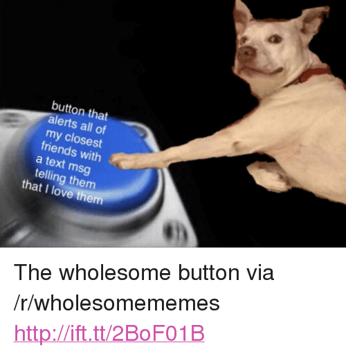 """Friends, Love, and Http: button that  alerts all of  my closest  friends with  a text msg  telling them  that I love them <p>The wholesome button via /r/wholesomememes <a href=""""http://ift.tt/2BoF01B"""">http://ift.tt/2BoF01B</a></p>"""