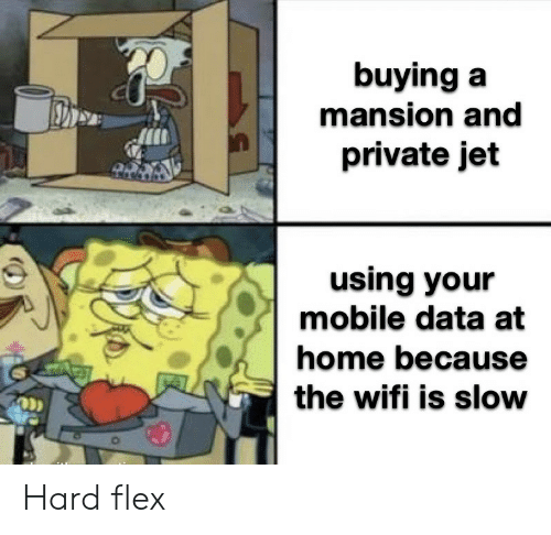 jet: buying a  mansion and  private jet  using your  mobile data at  home because  the wifi is slow Hard flex
