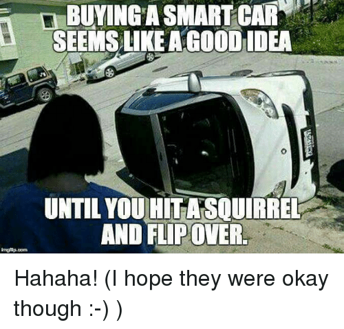 BUYING A SMART CAR SEEMS LIKE A GOODIDEA 0 UNTIL