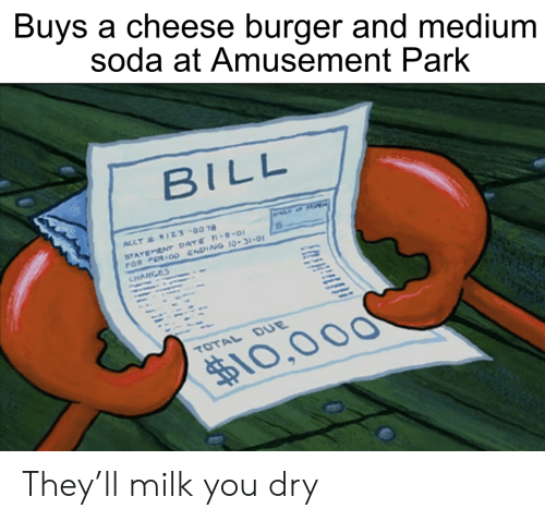 dry: Buys a cheese burger and medium  soda at Amusement Park  BILL  ACCT& $1Z3-0078  STATEMENT DATE -8-0  FOR PERIO0 ENDING 10-31-01  CHARGES  TOTAL DUE  $10,000 They'll milk you dry