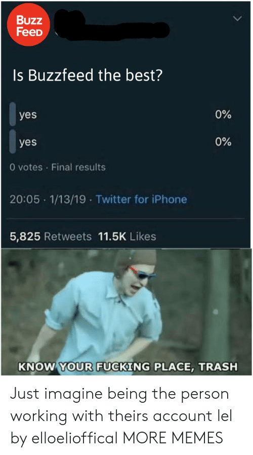 Theirs: Buzz  FeeD  Is Buzzfeed the best?  0%  yes  0%  yes  0 votes Final results  20:05 1/13/19 Twitter for iPhone  5,825 Retweets 11.5K Likes  KNOW YOUR FUCKING PLACE, TRASH Just imagine being the person working with theirs account lel by elloelioffical MORE MEMES