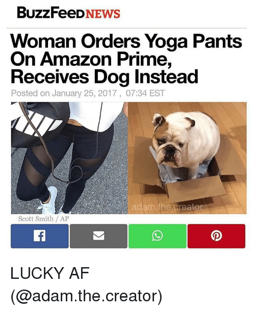 Yoga Pant: BuzzFeeD  NEWS  Woman Orders Yoga Pants  On Amazon Prime,  Receives Dog Instead  Posted on January 25, 2017, 07:34 EST  Scott Smith AP LUCKY AF (@adam.the.creator)