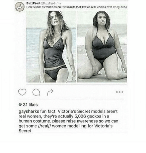 victorias secret models: BuzzFeed  RBuzzFeud 1m  Here's what Victoria's Secret swimsuits look lke on real women bzrd. 1Jguad4  o o o  31 likes  gaysharks fun fact! Victoria's Secret models aren't  real women, they're actually 5,006 geckos in a  human costume. please raise awareness so we can  get some //realll women modelling for Victoria's  Secret