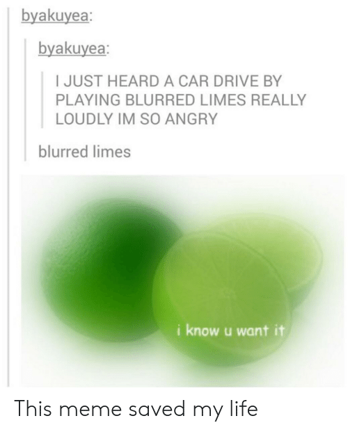 limes: byakuyea  byakuyea:  I JUST HEARD A CAR DRIVE BY  PLAYING BLURRED LIMES REALLY  LOUDLY IM SO ANGRY  blurred limes  i know u want it This meme saved my life