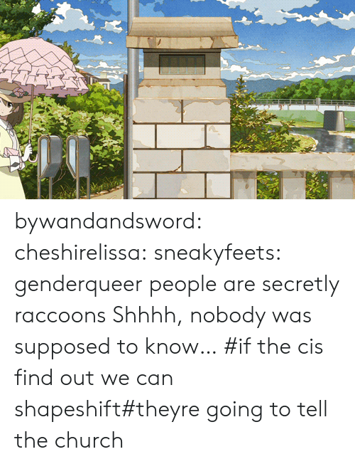 genderqueer: bywandandsword: cheshirelissa:  sneakyfeets:  genderqueer people are secretly raccoons  Shhhh, nobody was supposed to know…    #if the cis find out we can shapeshift#theyre going to tell the church