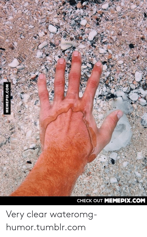 clear water: CНЕCK OUT MЕМЕРІХ.COM  МЕМЕРIХ.сOм Very clear wateromg-humor.tumblr.com