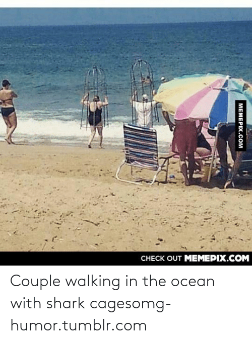Cages: CНЕCK OUT MЕМЕРIХ.COM  МЕМЕРIХ.СOм Couple walking in the ocean with shark cagesomg-humor.tumblr.com