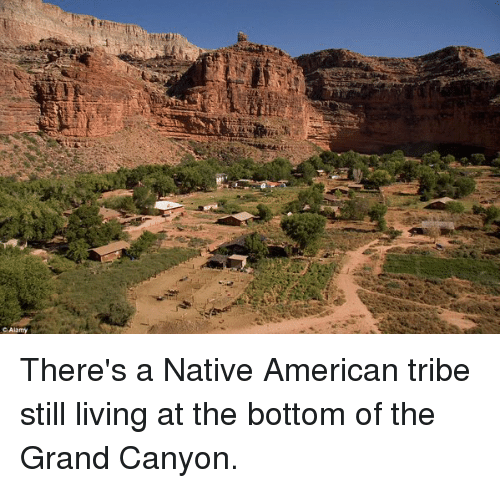 Image result for Native Americans lived in the canyon