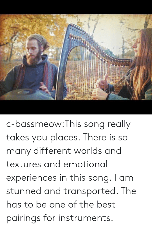 textures: c-bassmeow:This song really takes you places. There is so many different worlds and textures and emotional experiences in this song. I am stunned and transported. The has to be one of the best pairings for instruments.