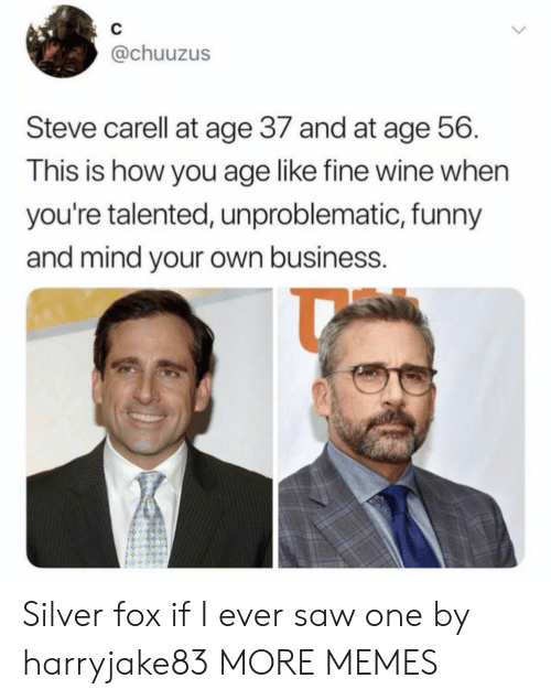 mind your own business: C  @chuuzus  Steve carell at age 37 and at age 56  This is how you age like fine wine when  you're talented, unproblematic, funny  and mind your own business. Silver fox if I ever saw one by harryjake83 MORE MEMES