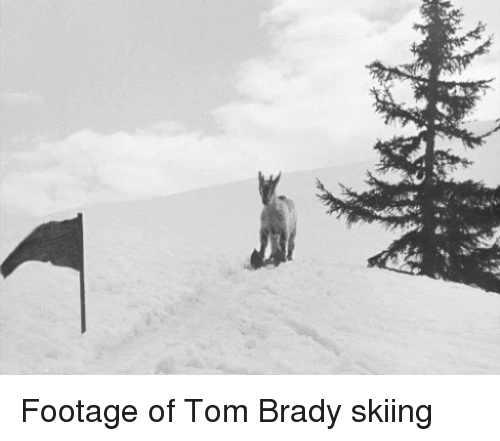 Memes, Toms, and Brady: C Footage of Tom Brady skiing