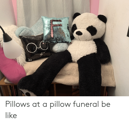 ravenclaw: C  RAVENCLAW  Poller A HISTORY OF MA Pillows at a pillow funeral be like