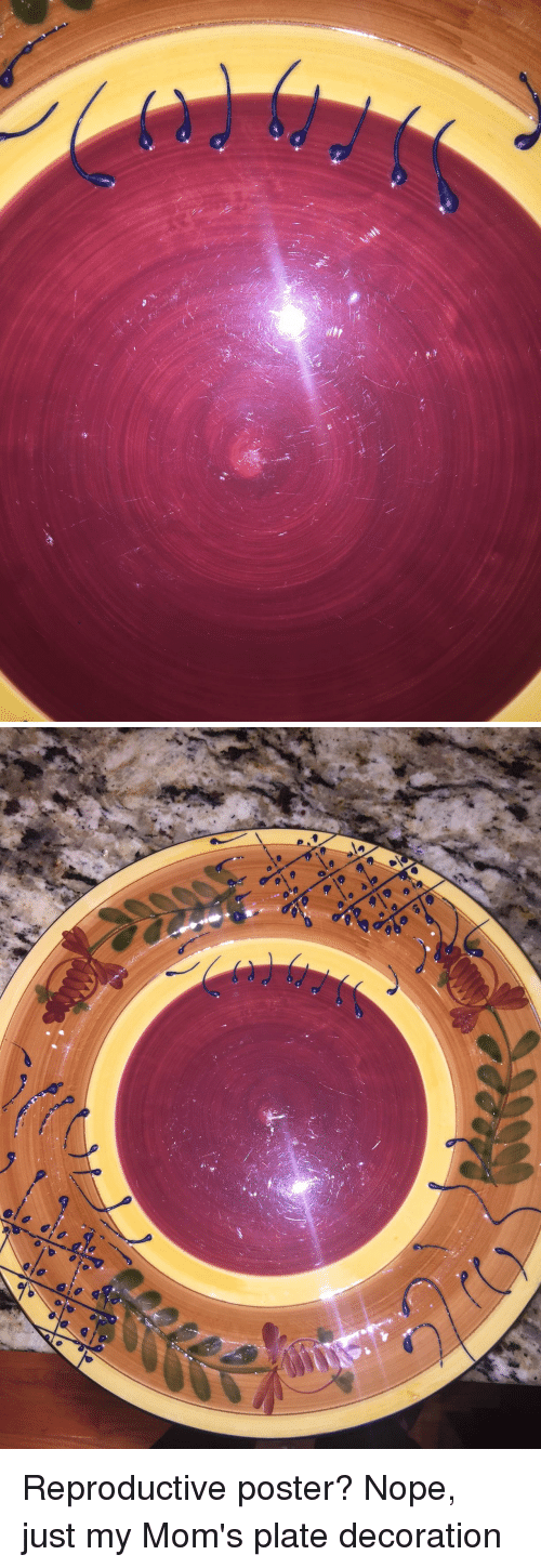 Funny, Moms, and Nope: C Reproductive poster? Nope, just my Mom's plate decoration