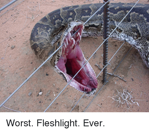fleshlight: c Worst. Fleshlight. Ever.