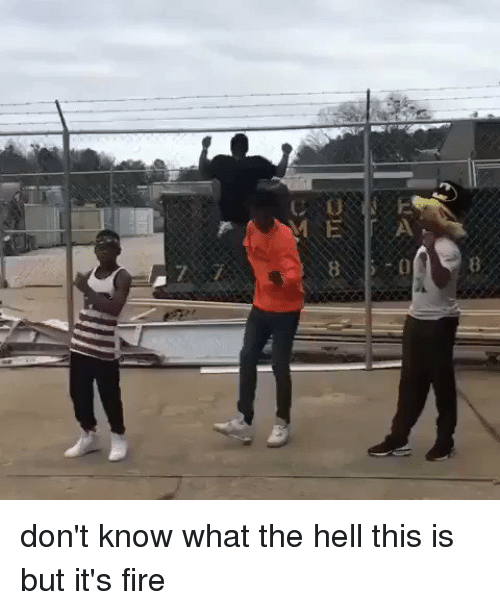 Blackpeopletwitter, Fire, and Hell: C0  ME.lr A  0  0E 8 don't know what the hell this is but it's fire