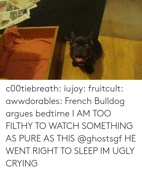french bulldog: c00tiebreath: iujoy:   fruitcult:  awwdorables:  French Bulldog argues bedtime  I AM TOO FILTHY TO WATCH SOMETHING AS PURE AS THIS   @ghostsgf   HE WENT RIGHT TO SLEEP IM UGLY CRYING