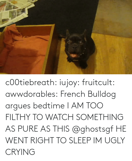 pure: c00tiebreath:  iujoy:   fruitcult:  awwdorables:  French Bulldog argues bedtime  I AM TOO FILTHY TO WATCH SOMETHING AS PURE AS THIS   @ghostsgf   HE WENT RIGHT TO SLEEP IM UGLY CRYING