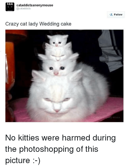 crazy cats: CAA.  cataddictsanonymouse  @cat addicts  Crazy cat lady Wedding cake  Follow  MOUSE No kitties were harmed during the photoshopping of this picture :-)