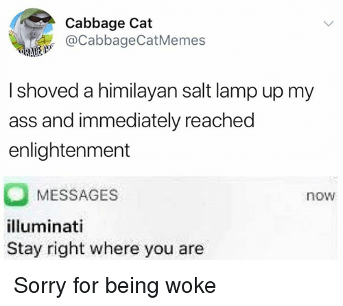 Ass, Sorry, and Dank Memes: Cabbage Cat  @CabbageCatMemes  I shoved a himilayan salt lamp up my  ass and immediately reached  enlightenment  MESSAGES  lluminati  Stay right where you are  now Sorry for being woke