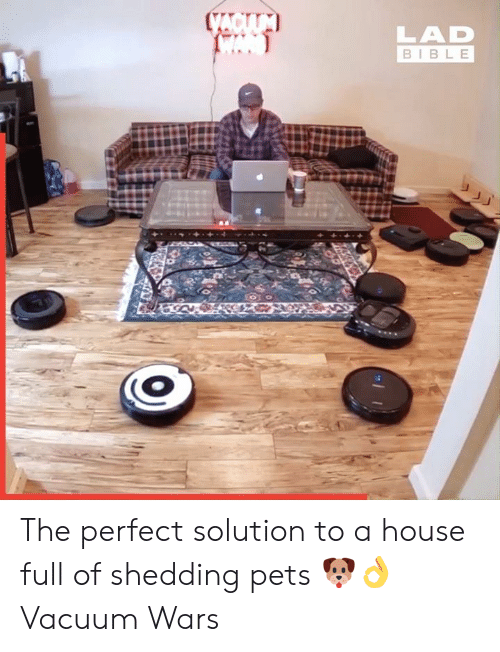 Vacuum: CACIUM  LAD  BIBLE The perfect solution to a house full of shedding pets 🐶👌  Vacuum Wars