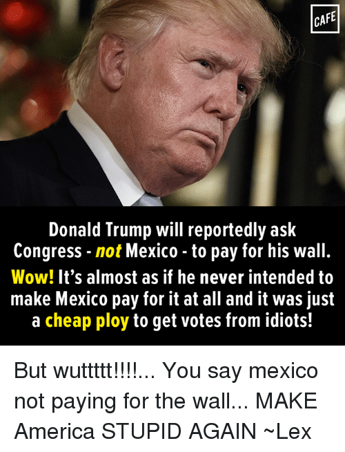 ploy: CAFE  Donald Trump will reportedly ask  Congress not Mexico to pay for his wall.  Wow! It's almost as if he never intended to  make Mexico pay for it at all and it was just  a cheap ploy to get votes from idiots! But wuttttt!!!!...  You say mexico not paying for the wall...  MAKE America STUPID AGAIN  ~Lex