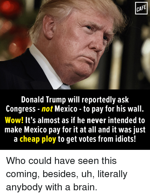 ploy: CAFE  Donald Trump will reportedly ask  Congress not Mexico to pay for his wall.  Wow! It's almost as if he never intended to  make Mexico pay for it at all and it was just  a cheap ploy to get votes from idiots! Who could have seen this coming, besides, uh, literally anybody with  a brain.