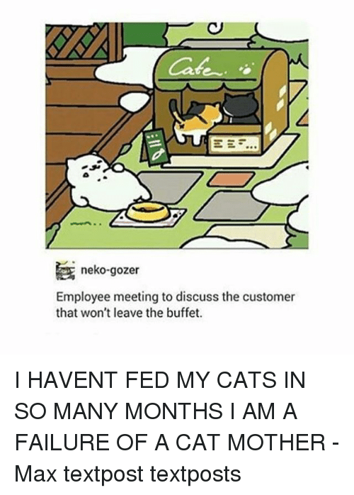 The Buffet: Cafe  neko-gozer  Employee meeting to discuss the customer  that won't leave the buffet. I HAVENT FED MY CATS IN SO MANY MONTHS I AM A FAILURE OF A CAT MOTHER - Max textpost textposts