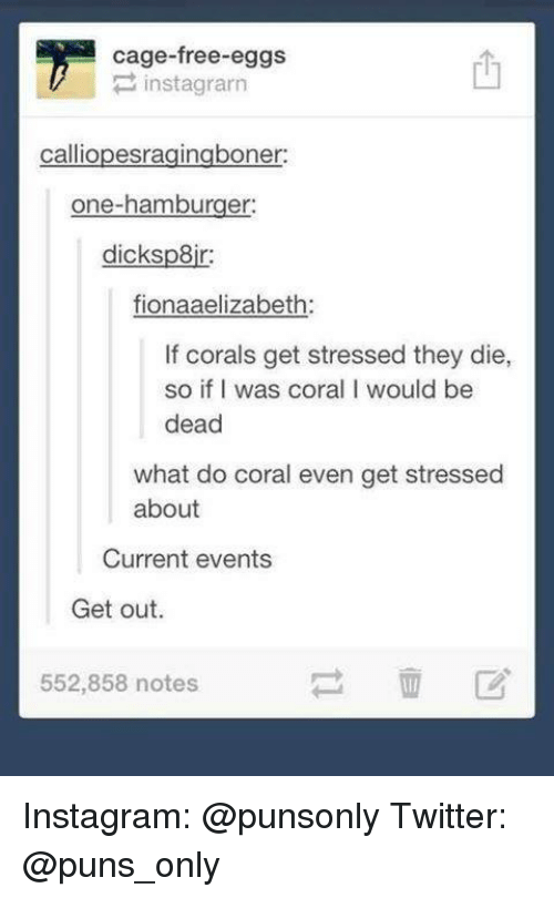 Insted: cage-free eggs  inst agrarn  calliopesragingboner:  one-hamburger:  dicksp8ir:  fionaaelizabeth:  If corals get stressed they die,  so if I was coral l would be  dead  what do coral even get stressed  about  Current events  Get out  552,858 notes Instagram: @punsonly Twitter: @puns_only