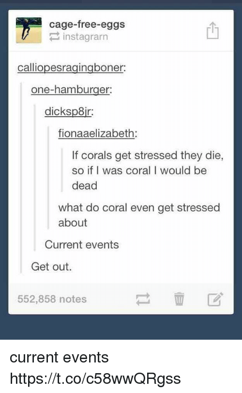 current events: cage-free-eggs  instagrarn  calliopesragingboner:  one-hamburger:  dicksp8ir:  fionaaelizabeth  If corals get stressed they die,  so if I was coral I would be  dead  what do coral even get stressed  about  Current events  Get out.  552,858 notes current events https://t.co/c58wwQRgss