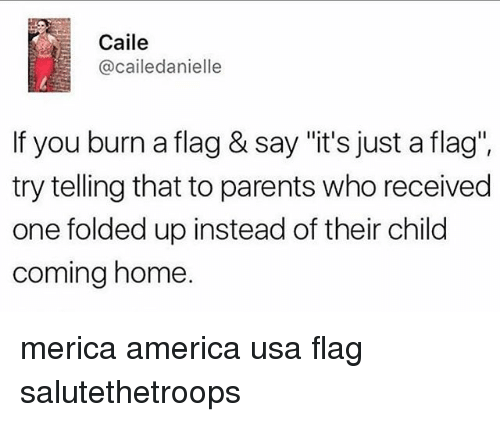 "America, Memes, and Parents: Caile  @cailedanielle  If you burn a flag & say ""it's just a flag"".  try telling that to parents who received  one folded up instead of their child  coming home. merica america usa flag salutethetroops"