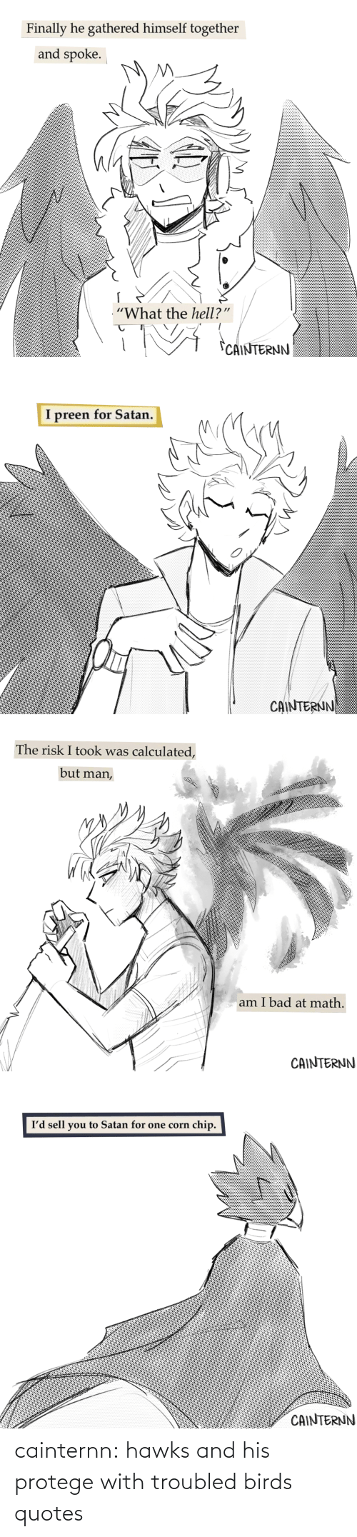 protege: cainternn:  hawks and his protege with troubled birds quotes