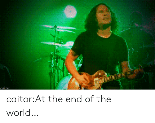 the end of the world: caitor caitor:At the end of the world…