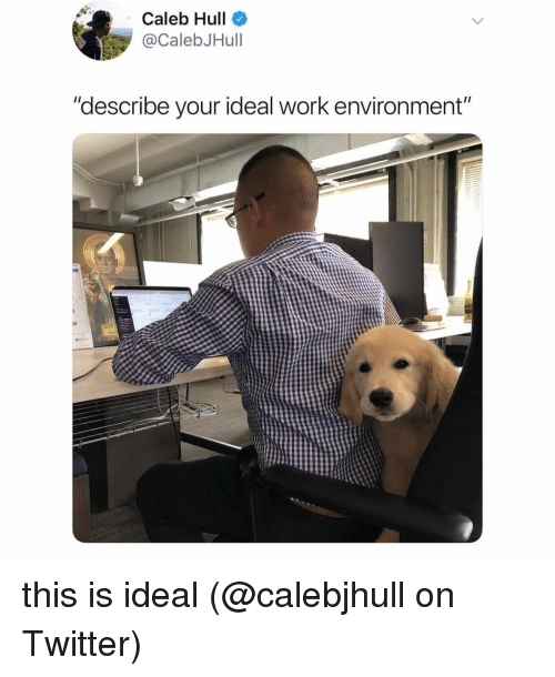 """hull: Caleb Hull  @CalebJHull  """"describe your ideal work environment""""  10 this is ideal (@calebjhull on Twitter)"""