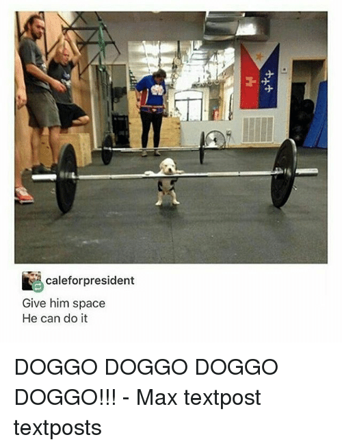 Memes, Space, and 🤖: caleforpresident  Give him space  He can do it DOGGO DOGGO DOGGO DOGGO!!! - Max textpost textposts