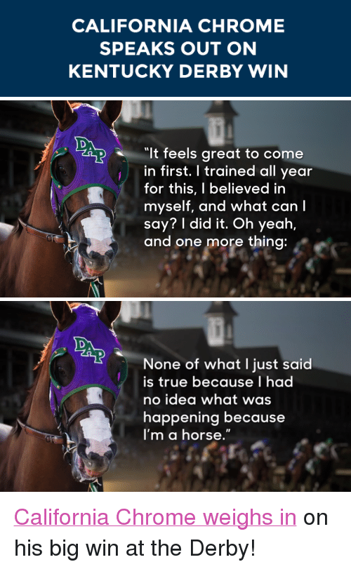 """kentucky derby: CALIFORNIA CHROME  SPEAKS OUT ON  KENTUCKY DERBY WIN   It feels great to come  in first. I trained all year  for this, I believed in  myself, and what can I  say? I did it. Oh yeah,  and one more thing   None of what I just said  is true because I had  no idea what was  happening because  I'm a horse."""" <p><a href=""""https://www.youtube.com/watch?v=79NAa7OfGLY&amp;list=UU8-Th83bH_thdKZDJCrn88g"""" target=""""_blank"""">California Chrome weighs in</a> on his big win at the Derby!</p>"""