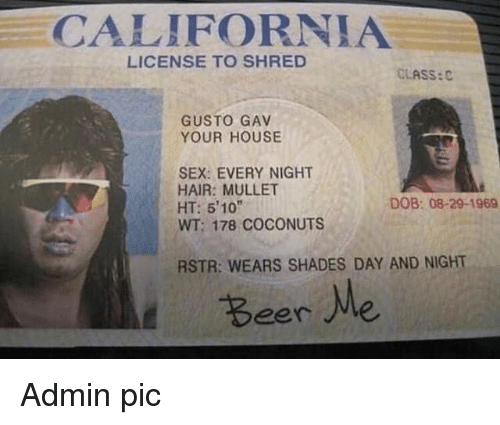 """mullet: CALIFORNIA  LICENSE TO SHRED  CLASS:C  GUSTO GAV  YOUR HOUSE  SEX: EVERY NIGHT  HAIR: MULLET  HT: 510""""  WT; 178 COCONUTS  DOB: 08-29-1969  RSTR: WEARS SHADES DAY AND NIGHT  Beere Admin pic"""