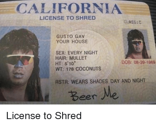 Gusto: CALIFORNIA  LICENSE TO SHRED  CLASS:C  GUSTO GAV  YOUR HOUSE  SEX: EVERY NIGHT  HAIR: MULLET  HT: 5'10  WT: 178 COCONUTS  DOB: 08-29-1969  RSTR: WEARS SHADES DAY AND NIGHT  Beer Me License to Shred